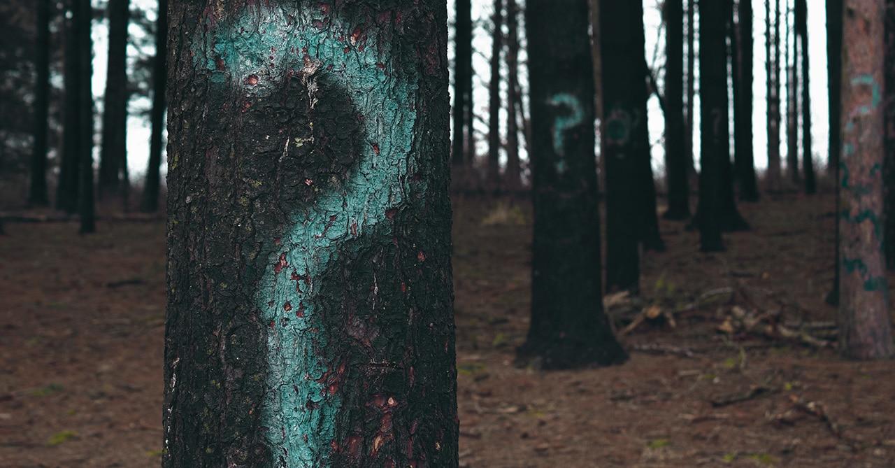 Szenvedély + betegség = szenvedélybetegség?